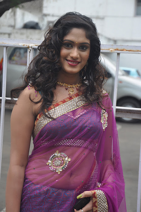 lavanya spicy transparent saree