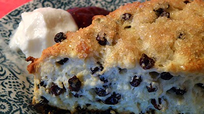 Closeup of Currant Scone