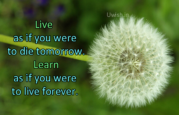 Live as if you were to die tomorrow, Learn as if you were to live forever.. Motivational e greeting cards and wishes.