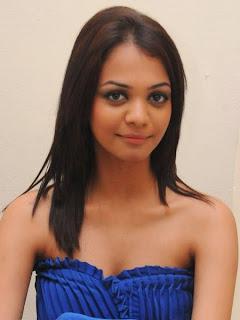 South Indian Spicy Model Henna Chopra  (2).jpg