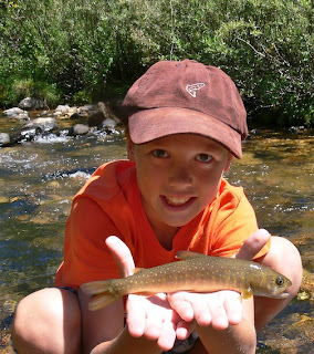 fly fishing, bull trout, Idaho