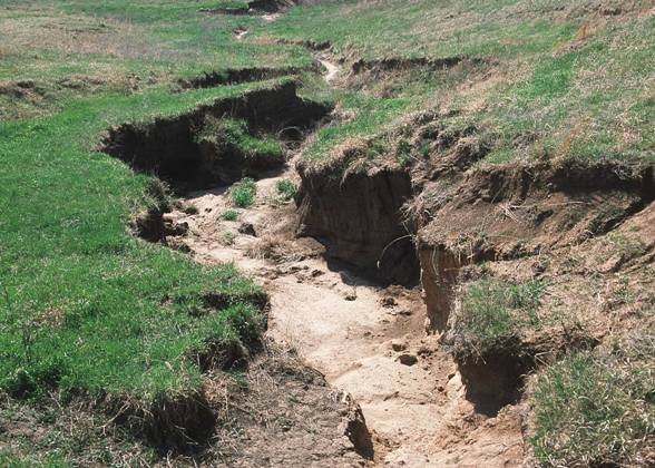 Binxi sondela hospitality nature conservation combat for Soil erosion causes