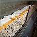 2014 Yeni Sigara Fiyatları Resmi Tam Liste