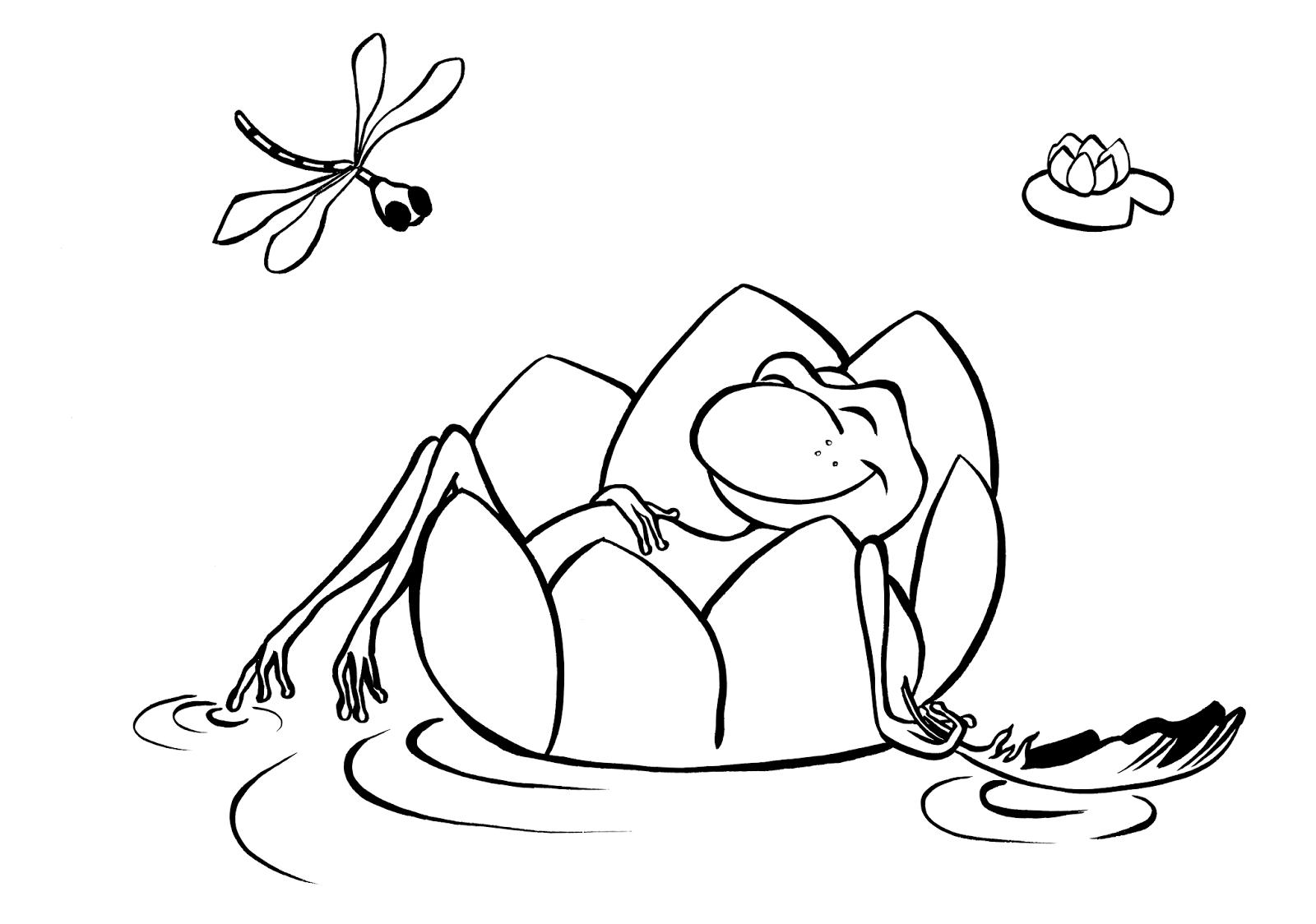 Les devoirs d 39 aquarl coloriage 6 - Coloriage de grenouille ...