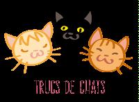 Picto illustration chats