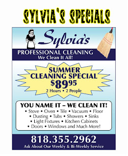 Gallery For gt Apartment Cleaning Services Flyers