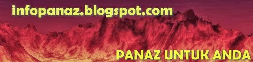 Info Panaz
