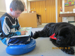 Our new pet-therapy reading dog Cooper!