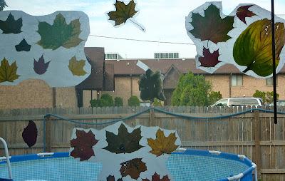 Fall-Leaf-Pressing