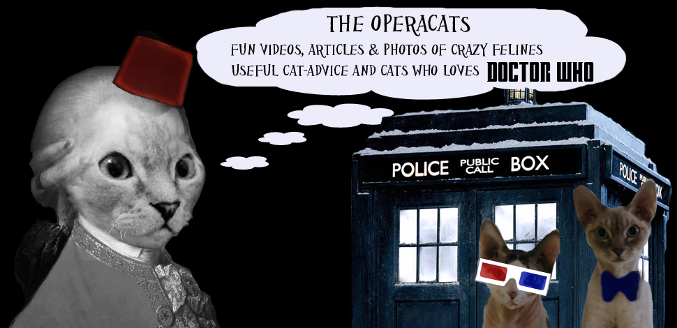 The Operacats