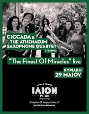 CICCADA & THE ATHENAEUM SAXOPHONE QUARTET