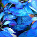 На самом деле листья синие или Как выжить в кризис