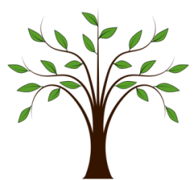 arbre avec feuilles (dessin)