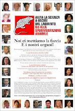 """da """"Il Giornale"""" 09/02/2014"""