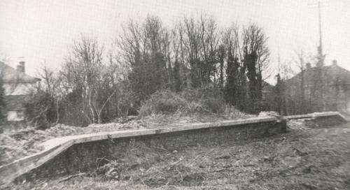 Platform edge of Privett Halt