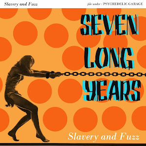 SEVEN LONG YEARS - Slavery and Fuzz