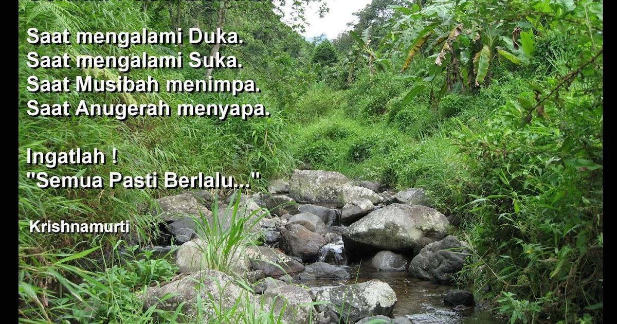 Image Result For Buku Kumpulan Puisi