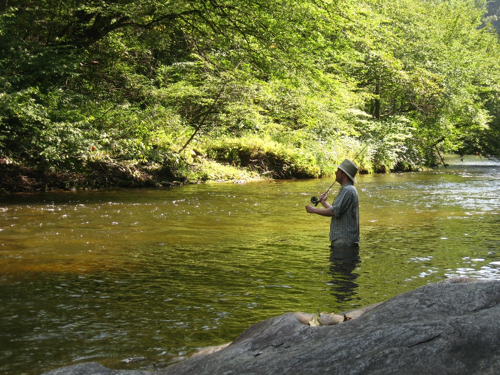 Brown mountain lodge and creekside cozy cabin rentals nc for Fishing in nc