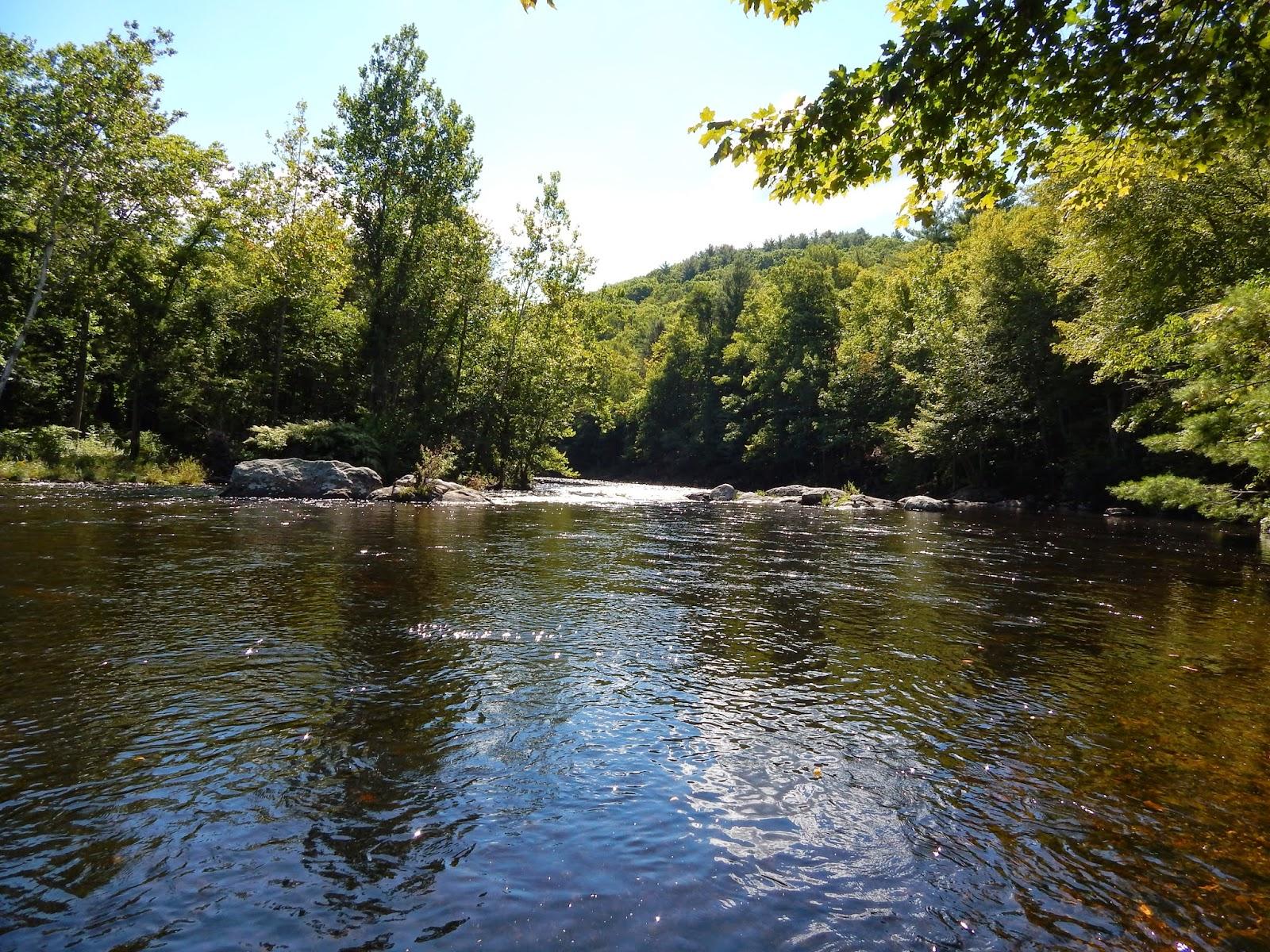 Small stream reflections the farmington river on the for Farmington river fly fishing