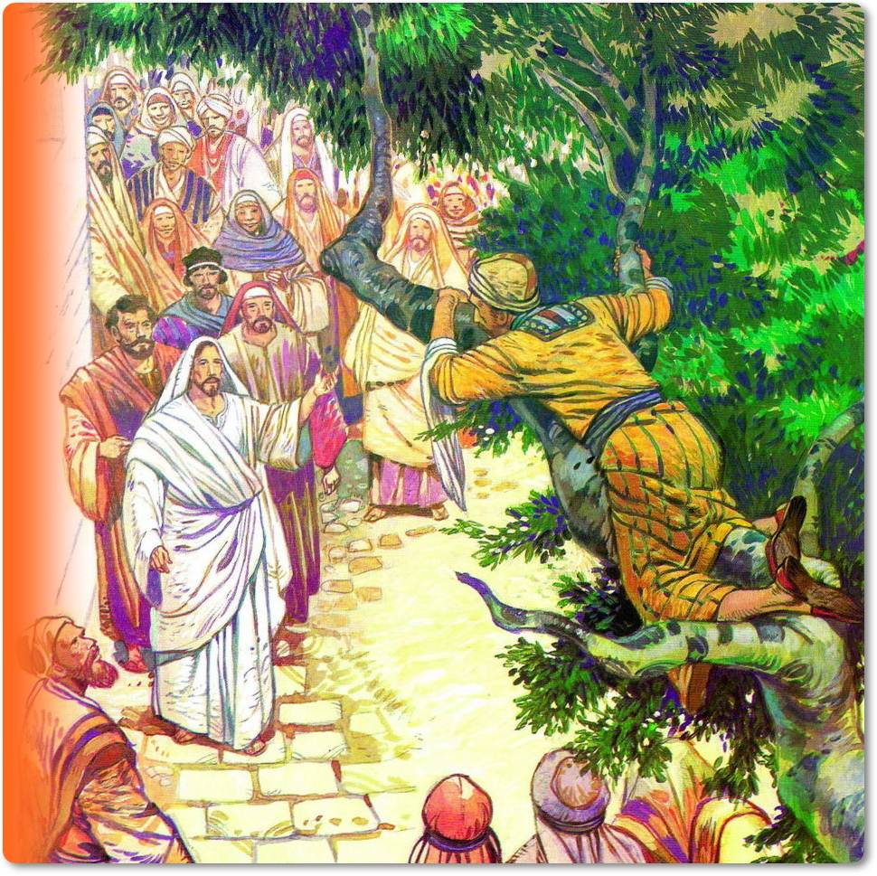 Pekerjaan Zakheus sebagai pemungut cukai pada saat itu sangat dibenci oleh kaum Yahudi yang melihat dia sebagai seorang pengkhianat karena telah bekerja