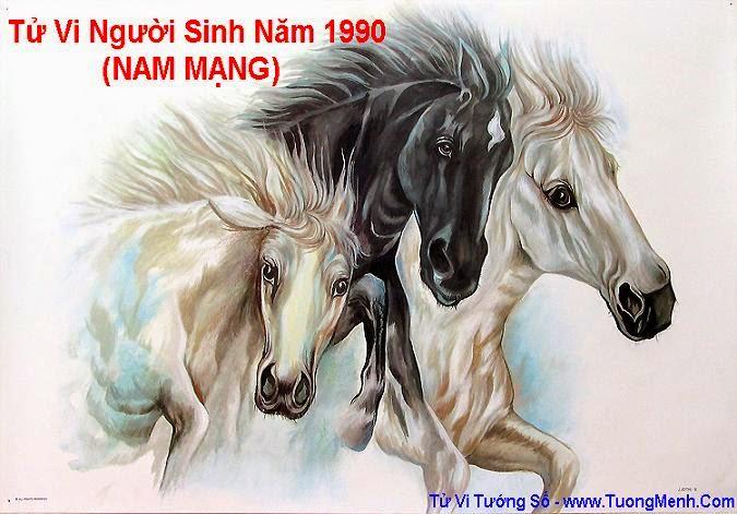 TU VI SINH NAM 1990 NAM MANG