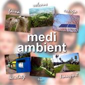 http://www.conselldelsinfantsolot.cat/p/medi-ambient-com-tractem-lentorn-natural.html