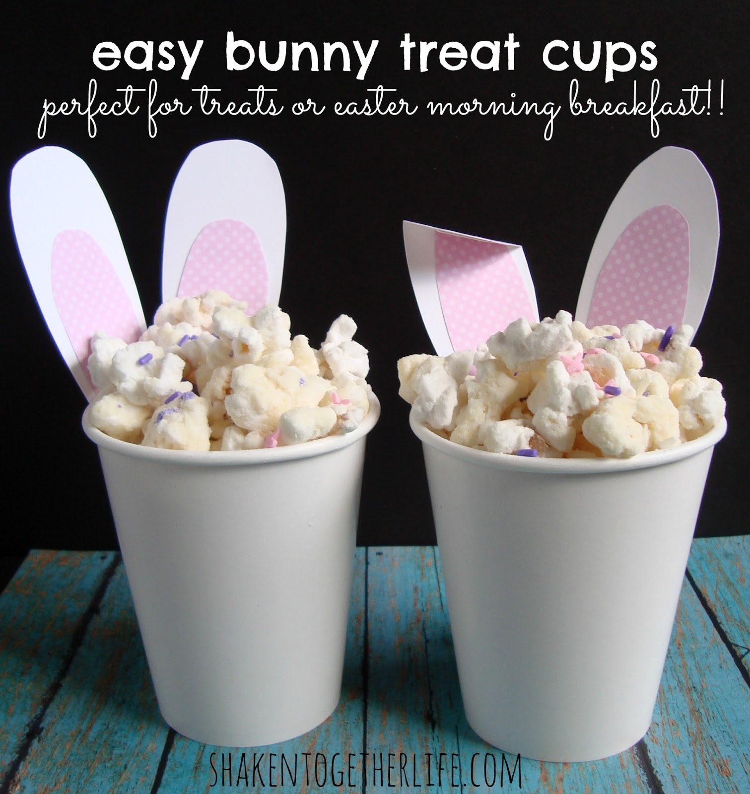 Easy easter bunny crafts - Easy Easter Bunny Crafts 46