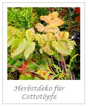 Herbstdeko für Cottotöpfe