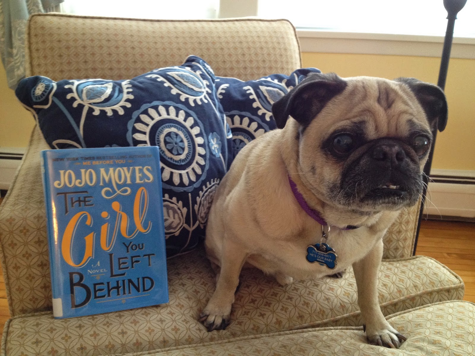 Stageoflife Book Blog The Girl You Left Behind Jojo Moyes