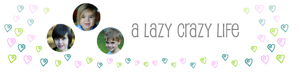 A Lazy Crazy Life