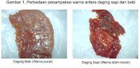 Cara Membedakan Daging Sapi Dan Daging Babi [ www.BlogApaAja.com ]