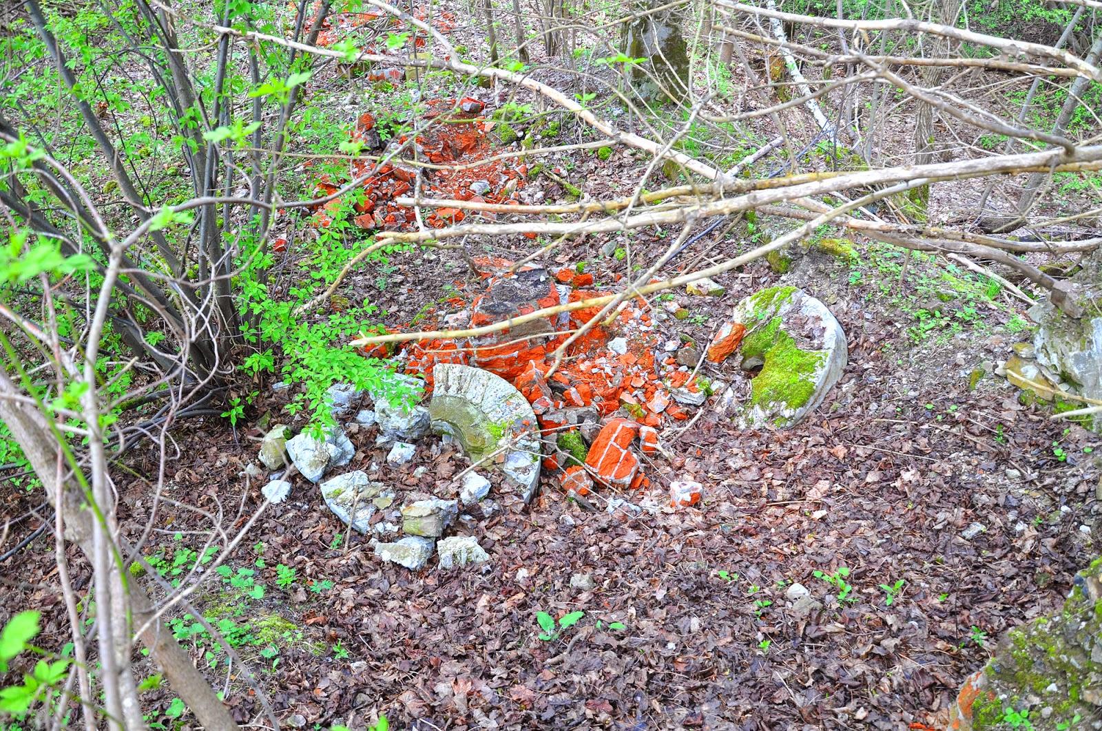 Małachów, zachowane szczątki młyna - widoczne fundamenty i koła młyńskie. Foto. KW.