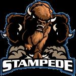 Buffalo Stampeding Herd