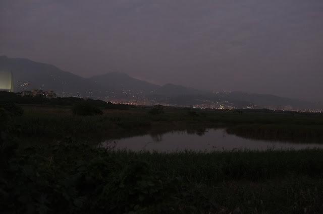 濕地的黃昏,遠方北頭一帶的燈火一盞盞點亮,在遠處是氤氳的大屯山脈。這是最美的一刻。