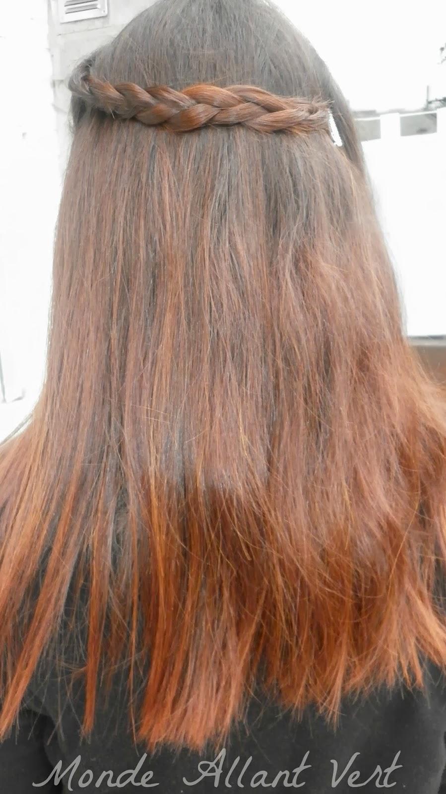 cette fois ci pour mon 3e henn jai voulu tester le henn du rajasthan lawsonia inermis henn baq couleur reflets roux acajou sur cheveux blancs - Coloration Henn Rouge