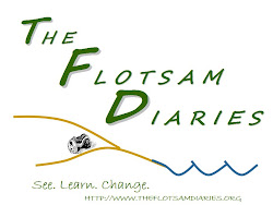 The Flotsam Diaries