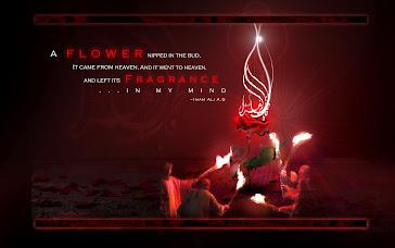 Imam Ali(a.s), FaTima is a flower......
