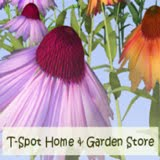 T-Spot