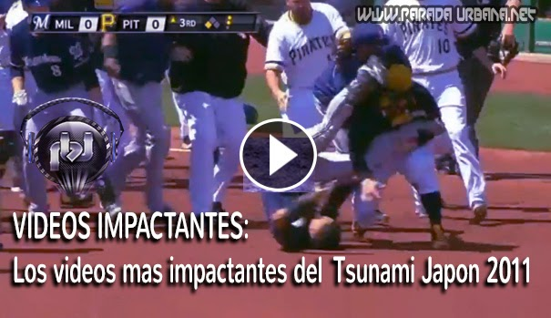 VIDEO INSOLITO - Dominicano, protagonista de un pleito en Juego de Pelota de Grades Ligas