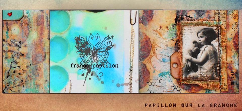 france papillon