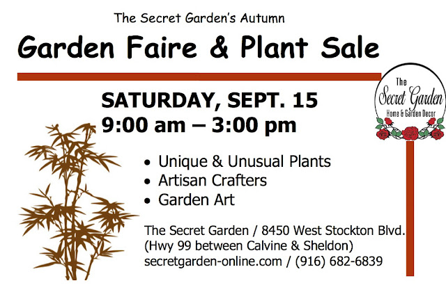 Garden Faire and Plant Sale September 15 features unique and unusual plants