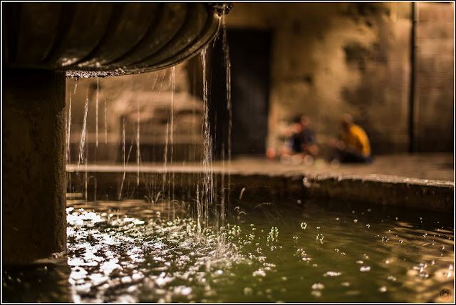 Las crónicas de Neri: Conversaciones al amparo del agua