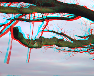 3d stereo image