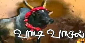 Vaadi Vaasal Jallikattu Mattu Pongal Special Thanthi Tv Pongal Special Program Shows 14-01-2014