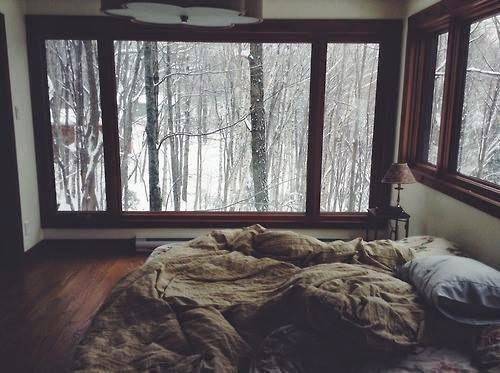 winter, zima, las, śnieg, snow, biel, interior,