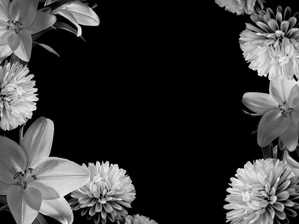 Black And White Flower Background Wallpaper Hd Wallpaper