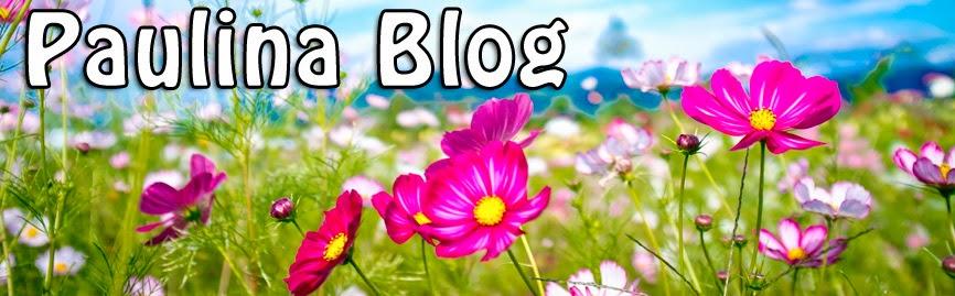 Paulina Mi Blog