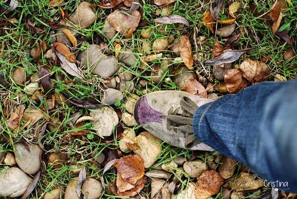 pisando hojas secas