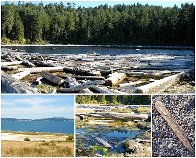 places to hike san juan island jackal's lagoon