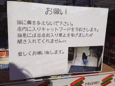 """Seekor kucing menjadi """"Buronan"""" di Jepang karena sering mencuri di minimarket"""